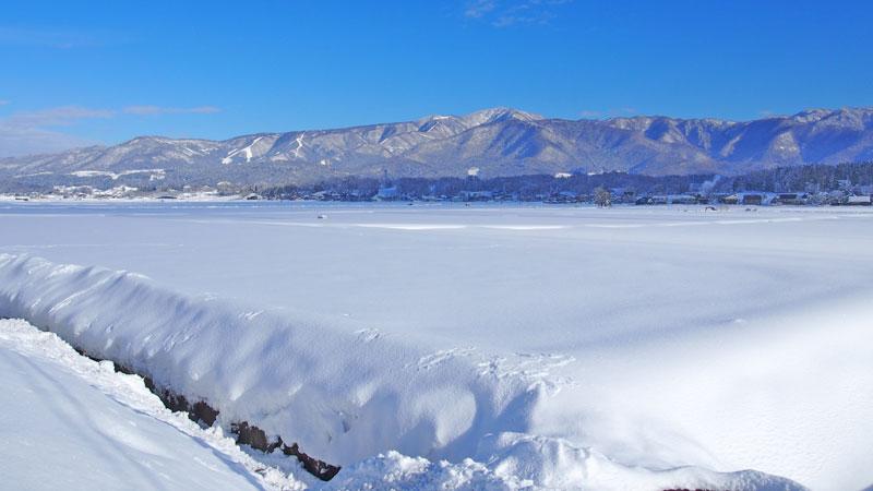 雪に覆われた田んぼ